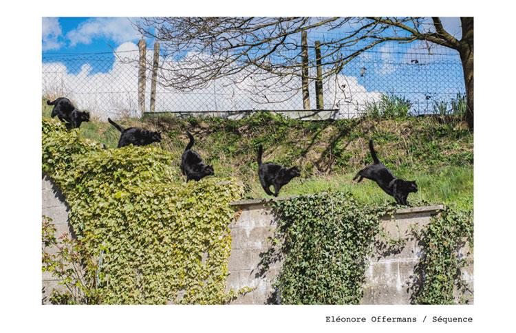 15-1-Eléonore-Offermans