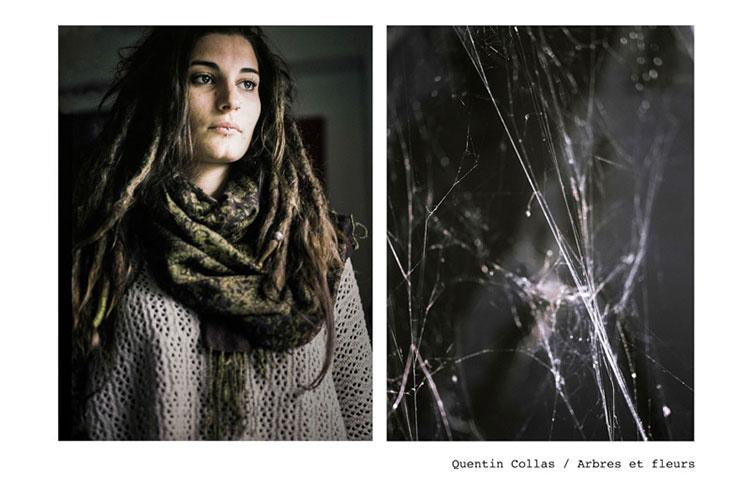 28-Quentin-Collas-arbres-fleurs